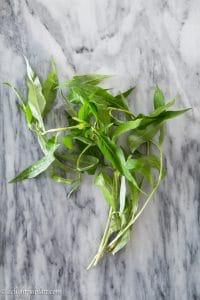 Vietnamese coriander (Rau ram)