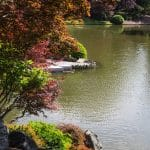 Japanese garden at Missouri Botanical Gardens, St. Louis