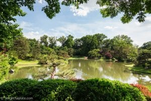 Trees surrounding lake at the Missouri Botanical Gardens - St. Louis