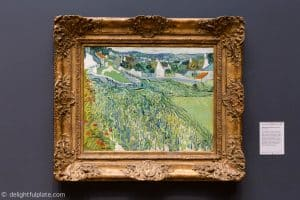 Vineyards at Auvers painting by Van Gogh at St. Louis Art Museum