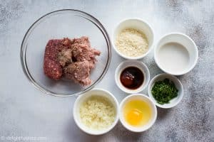 Ingredients for Japanese Hamburg Steak (Hambagu)