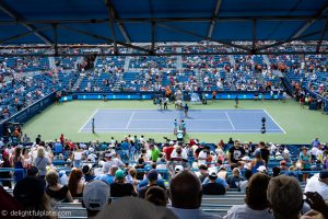 Western & Southern Open Row Y Section 313 view (Terrace level)