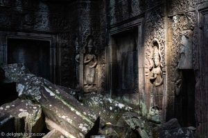Must See in Siem Reap - Carvings at Ta Prohm temple