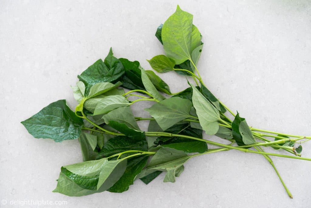 Vietnamese La Lot Leaves (Piper Lolot) which are not the same as betel leaves