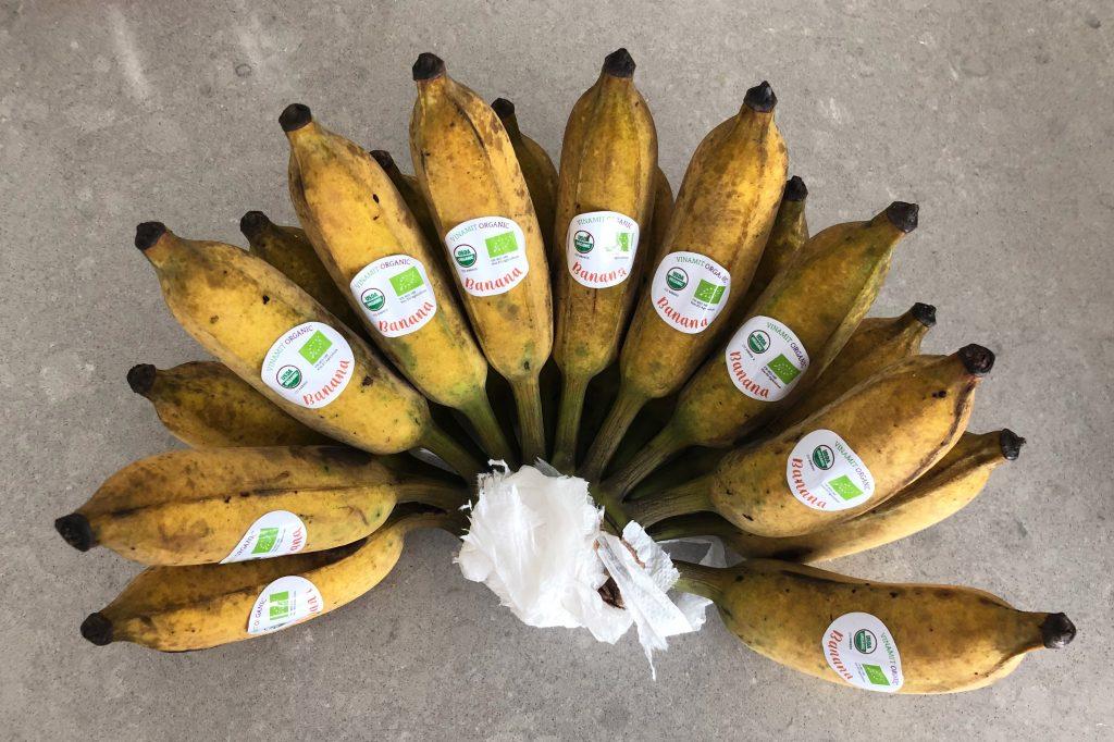 Vietnamese pisang bananas (chuoi su)